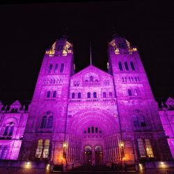 Natural History Museum London - Credit Marianne Taylor 01